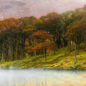 Herbst im Lake District von Daniela Beyer