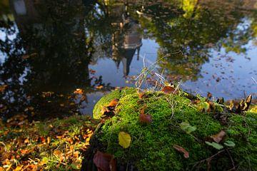 Autumn Castle van denk web