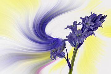 Blauwe klokbloem, tegen een kleurrijke abstracte achtergrond. van Harry Adam