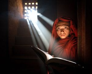 Boeddhistische Monnik uit Myanmar