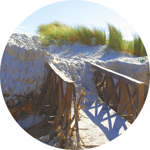 Dune Bridge van Christiane Behrmann