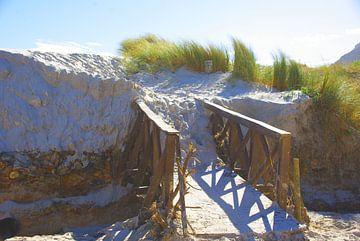 Dune Bridge