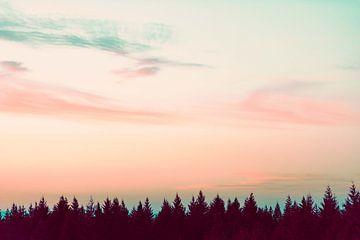 Sonnenuntergang über den Pines, Nature Magick  von PI Creative Art