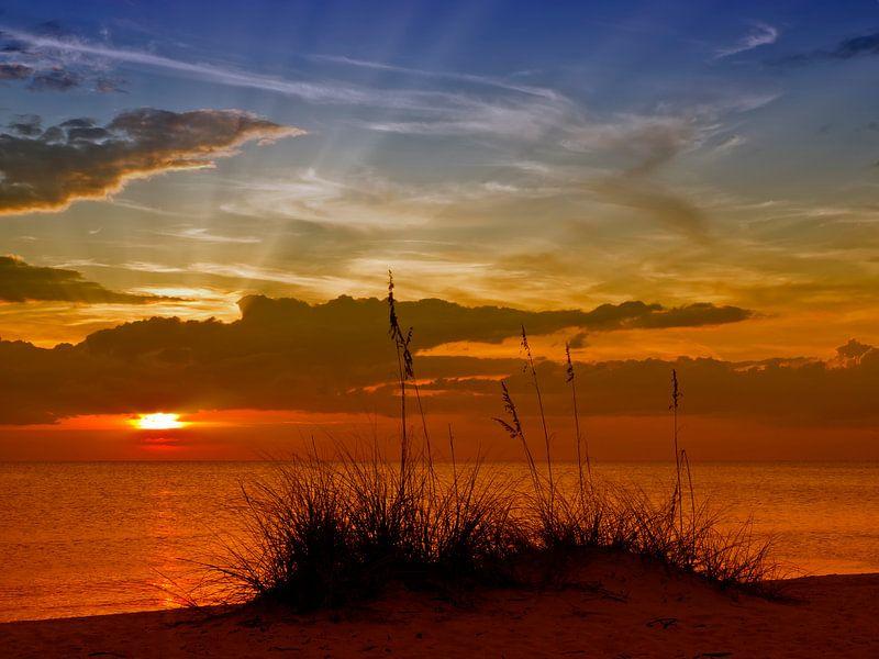 Gorgeous Sunset van Melanie Viola