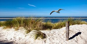Noordzee - Eiland Langeoog