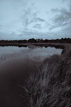 Strabrechtse Heide 281 van Desh amer