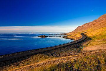 Droomweg in IJsland van Dieter Meyrl