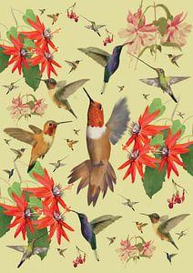 Le colibri sur Wilfried van Dokkumburg