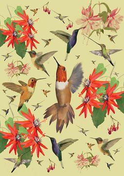 De Kolibrie van Wilfried van Dokkumburg