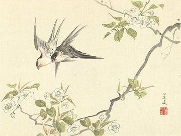 Zwei Schwalben von Matsumura Keibun - 1892