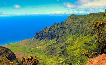 Kalalau Vallei, Hawaii van
