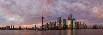Shanghai van Denis Feiner