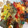 nazomer colors van Andreas Wemmje thumbnail
