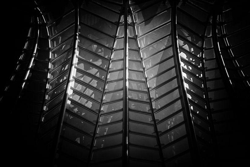Lijnen in zwart-wit van Bert Meijer