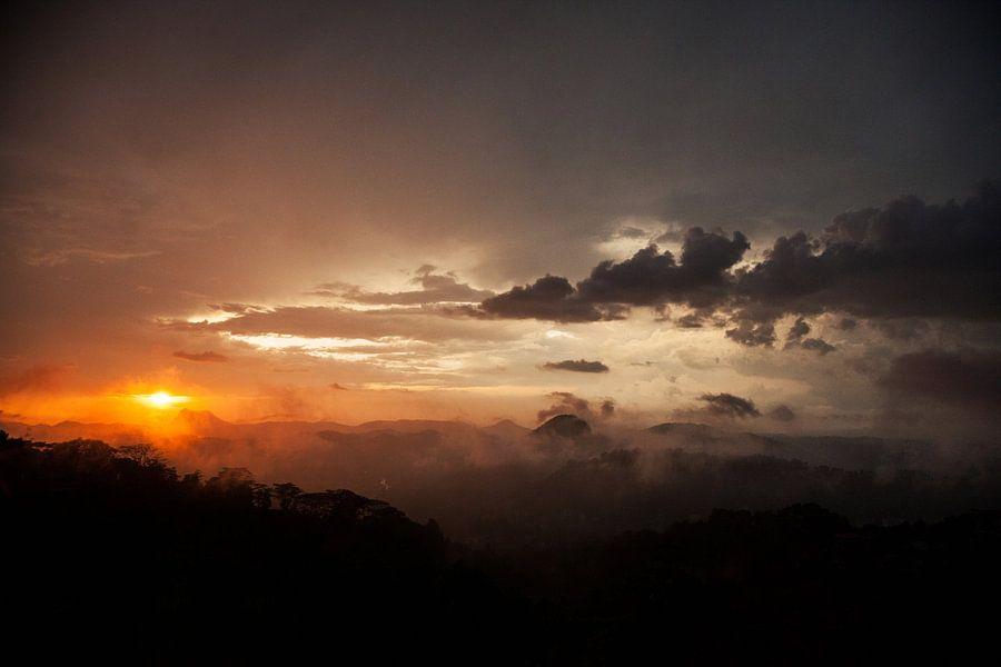 After the Rain van Insolitus Fotografie