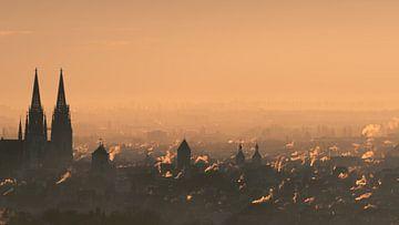 Rokende schoorstenen boven de oude stad van Regensburg in het wazige ochtendlicht van Robert Ruidl