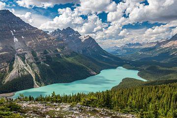 Peyto Lake (Kanada) von Eelke Brandsma