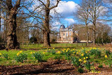 Frühling im Park von Brasschaat von Bruno Hermans
