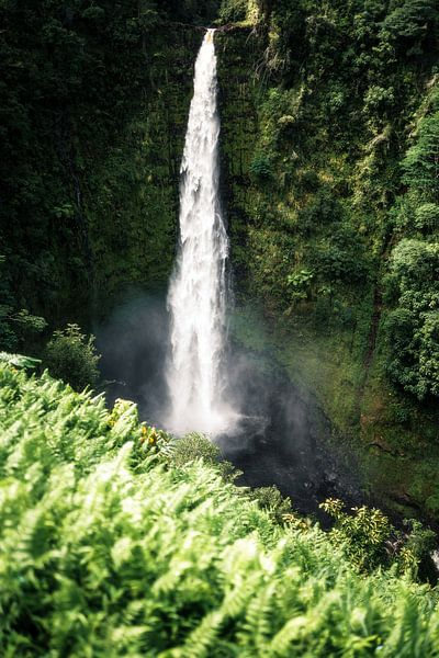 Waterval Hawaii van road to aloha