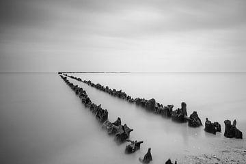 Palen in het water op het strand van Sjoerd van der Wal