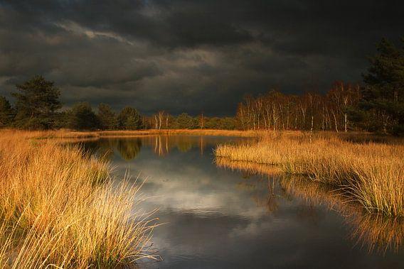 Landschap in reflectie van Erwin Stevens