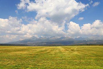 Beautiful landscape with mountains over field von Anton Eine