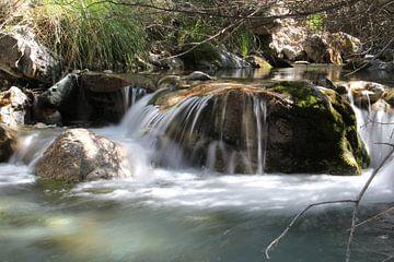 Rio Dilar van