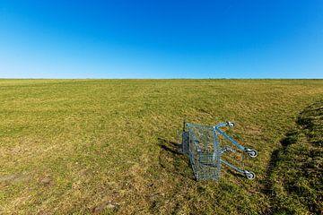 Shopping Cart! van Rene Kuipers
