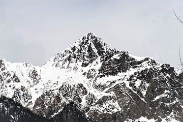 Kanada Bergland von Mooi-foto van Well