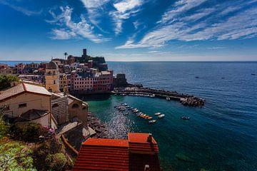 Prachtige haven van Cinque Terre van Roy Poots