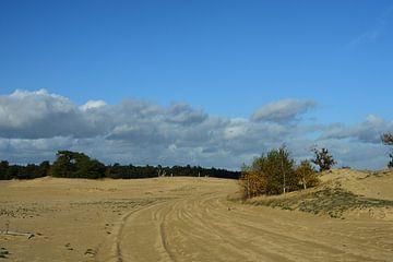 Sanddrift in der Sonne von Gerard de Zwaan