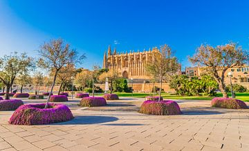 Kathedraal la Seu in Palma de Majorca centrum, Spanje van Alex Winter