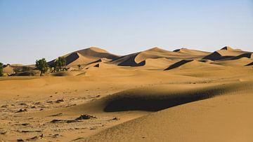Wegdromen in de Sahara van Bep van Pelt- Verkuil