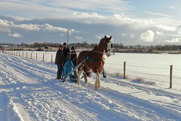 Ameland in winterkleed von Rinnie Wijnstra