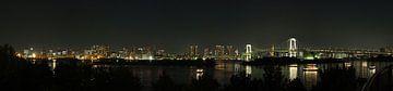 Zicht op de baai van Tokyo vanuit Odaiba van Jasper H