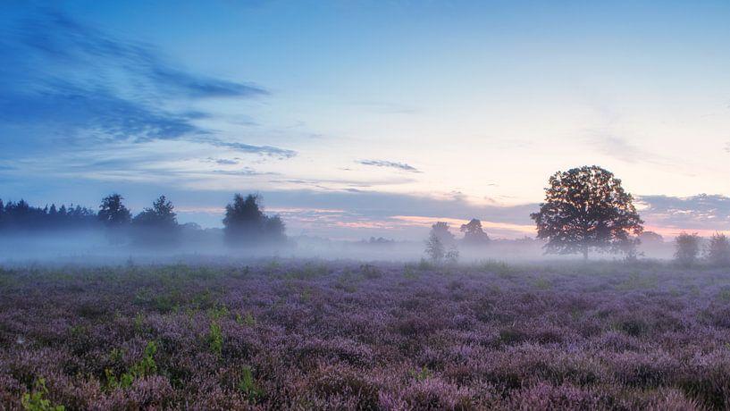 At the break of dawn van Lex Schulte