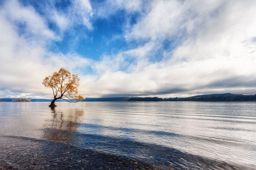Lake Wanaka van Cho Tang