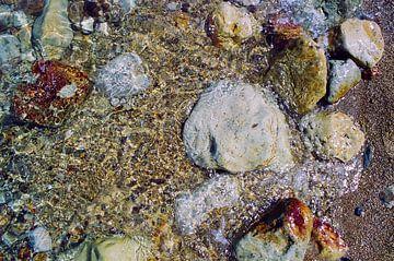 Stenen in Dode Zee van Gwen Mustamu