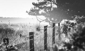 Het hek von Pieter Heres