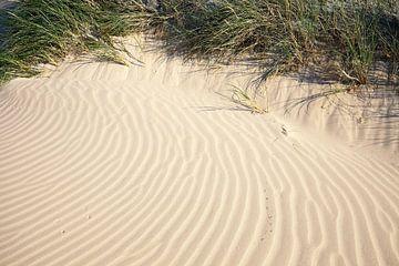 Dune van BVpix
