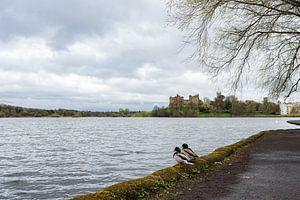 Linlithgow Palace van