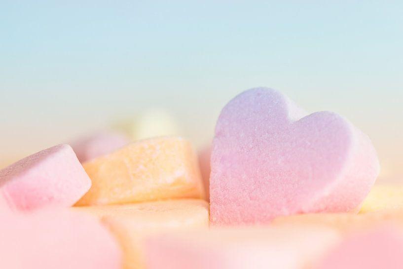 suikerzoet van Elly van Veen