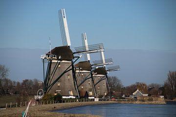 Drie windmolens van Stompwijk van