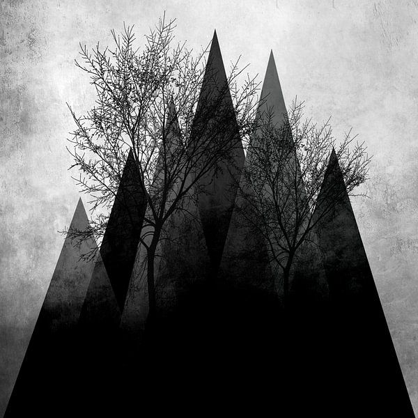 TREES VIa von Pia Schneider