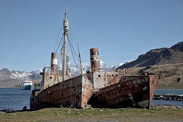 Oude walvisjagers in Grytviken, Zuid-Georgië van Angelika Stern