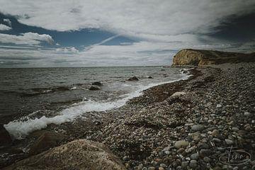 De ruwe natuur strand van Tina Linssen