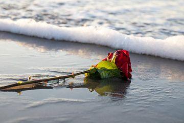 Verlorene Liebe von Dennis Ipema
