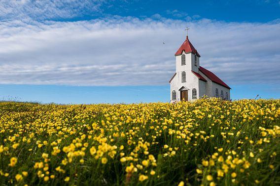 Une petite église romantique entourée de tournesols sur une petite île en Islande.