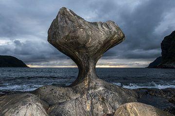 Kannesteinen in Maloy von Gerry van Roosmalen