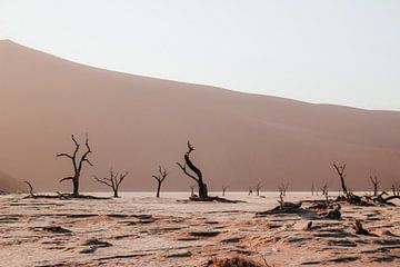 De deadvlei in Sossusvlei Nationaal Park, Namibië van Maartje Kikkert